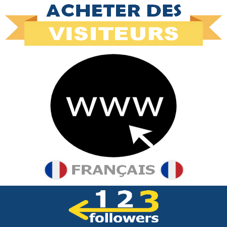 Acheter des Visiteurs Français pour son Site